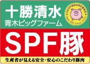 十勝清水 SPF豚